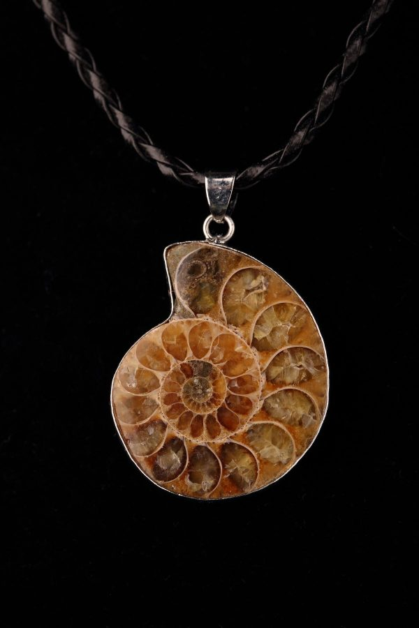 #287 Faux Leather Cord Necklace With Ammonite Pendant