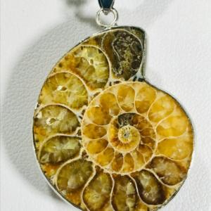 Necklace With Ammonite Pendant